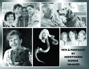NORTHERN HORSE IMAGES PROMOTION MATERIAL